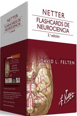 Netter Flashcards de Neurociencia